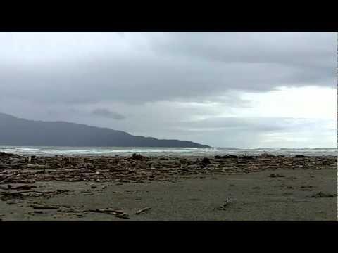 Paraparaumu Beaches: Paraparaumu, New Zealand