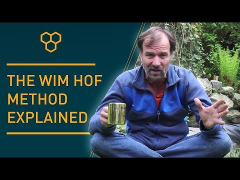The Wim Hof Method explained - YouTube