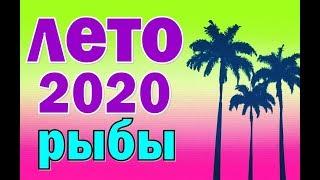 РЫБЫ  ✅  ЛЕТО 2020.  Таро прогноз гороскоп