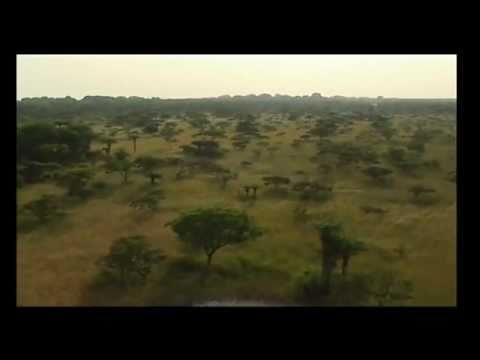 Guiné Bissau, as paisagens (segunda parte)