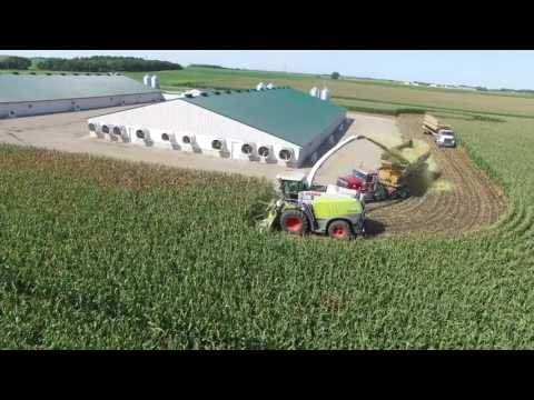 D&H Field Services silage chopping