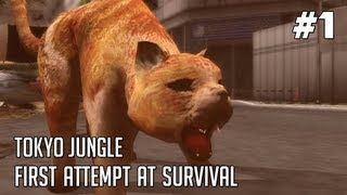 Tokyo Jungle Gameplay - Part 1: Fat Cat Vs. Hippo