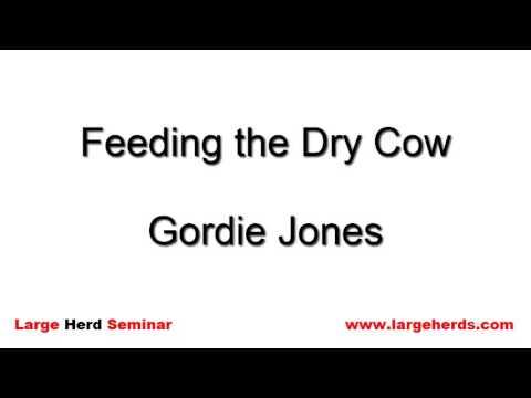 Feeding the Dry Cow by Gordon Jones