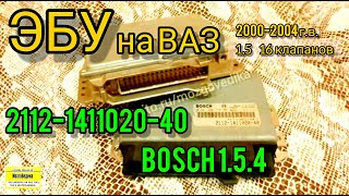 эБУ (Мозги) на ВАЗ 2112-1411020-40. Обзор и прошивка Bosch 1.5.4 1.5 16 кл. евро-2 ВАЗ 2000-04 гв
