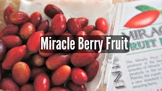 Tasting Miracle Berry Fruit - Fruity Fruits