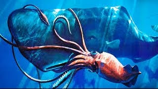 Searching for Giant Squid(full documentary)HD