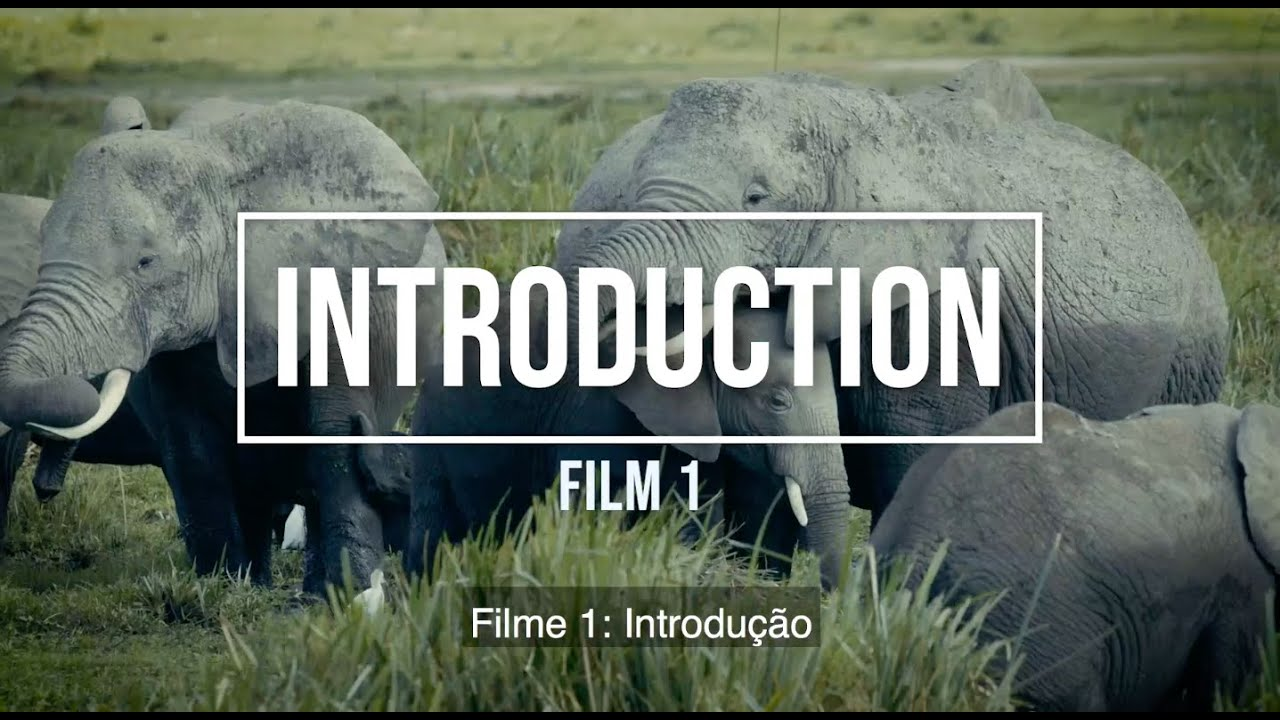 Filme 1: Introdução Portuguese