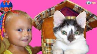 Котенок Барсик - новый питомец Ярославы! Ярослава покупает Домик для Котенка. Видео для детей