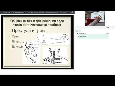 Биологически активные точки на теле человека. Часть II