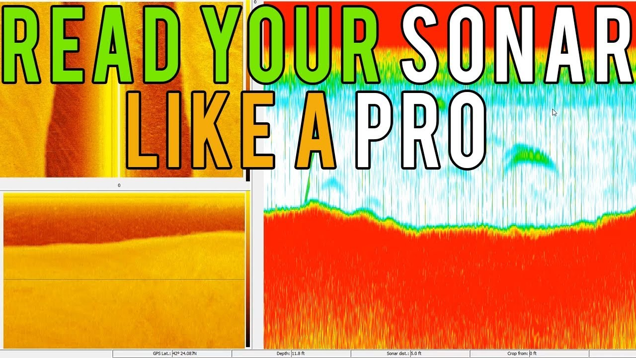 How To Read A Fish Finder Sonar Like a Pro