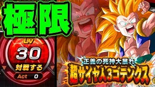 【ドッカンバトル】ゴテンクス3の極限Zバトルに3種の超知編成で行ってみた【Dragon Ball Z Dokkan Battle】
