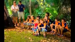 Chiquititas- Escolha dos grupos