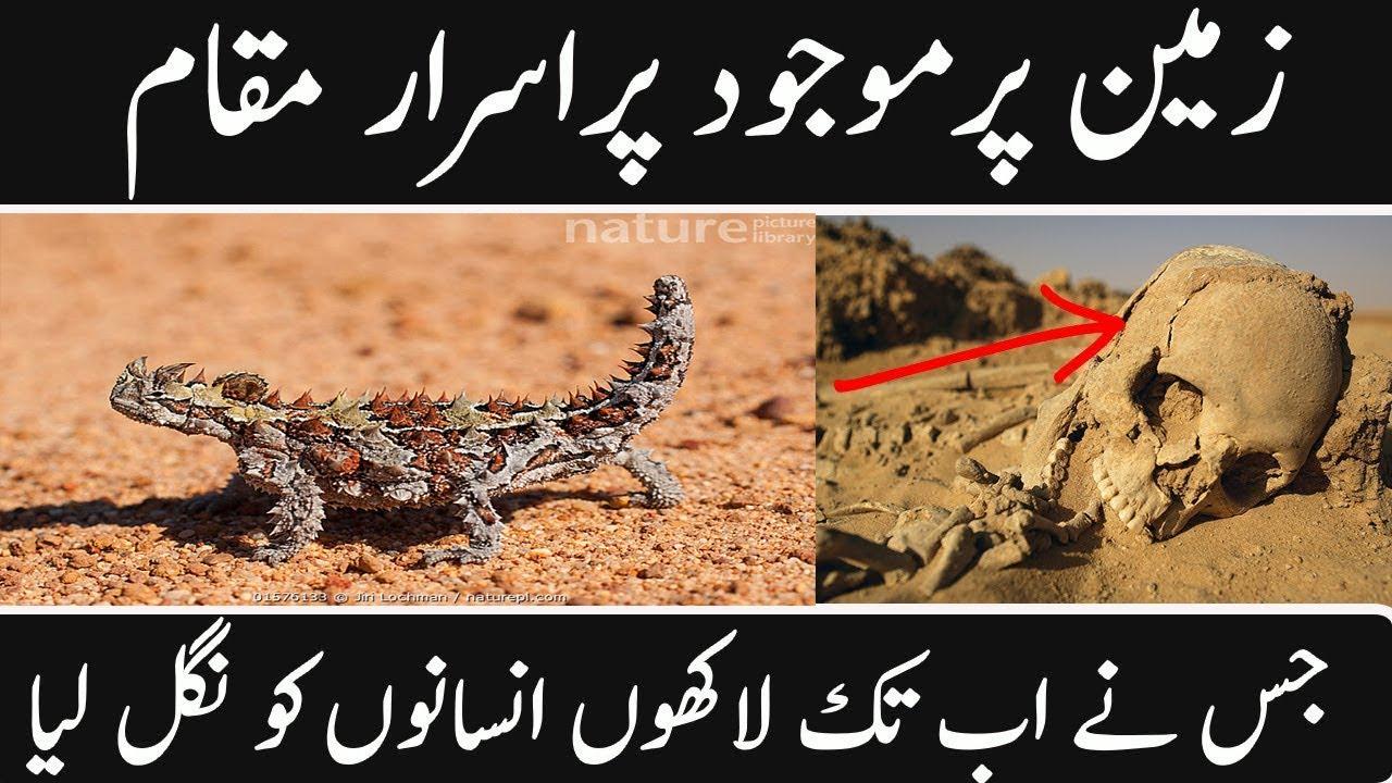 MOST AMAZING FACTS ABOUT SAHARA DESERT IN URDU HINDI || URDU COVER