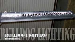 Bulldog Lighting Tuff Torture Test #3