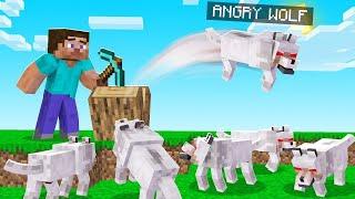 BREAK BLOCK = ANGRY WOLF Spawns! (run)