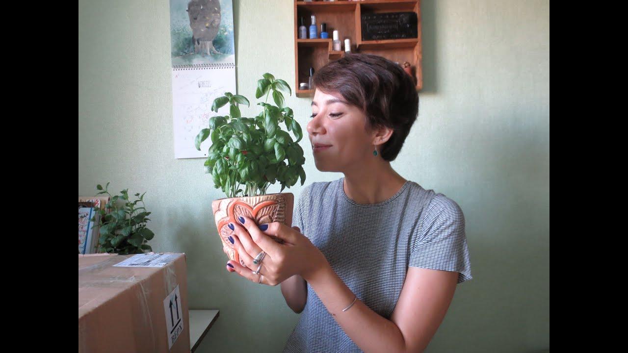 Прощай детский сад «Журавушка» в Сумах (Украина) - выпуск 2017, на .