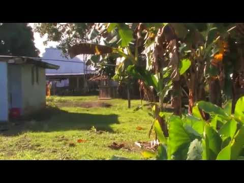 Now Church Solomon Islands Documentary