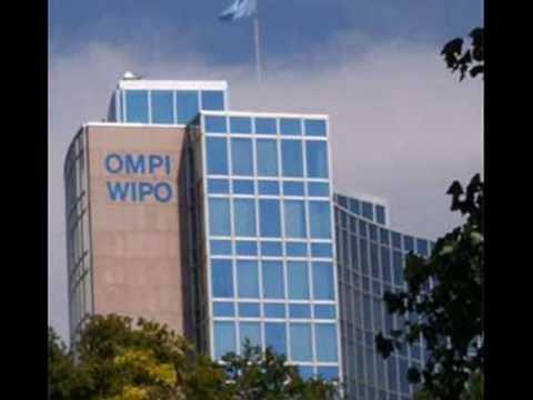 orld intellectual property organization - 808×846