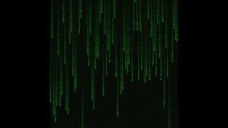 ⭐ Живые обои Matrix — falling code | Скачать бесплатно | На рабочий стол | Киберпанк ⭐