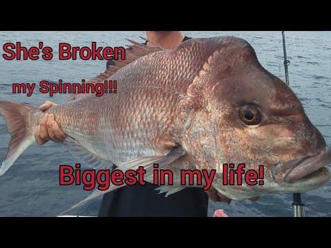 Night Fishing on Spinning. Fishing Sim World: Pro Tour. No Commentary.  