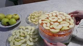 Пробую новую сушилку для овощей и фруктов