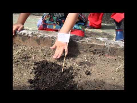 Jardin infantil garabatos huerta ma ana youtube for Jardin infantil