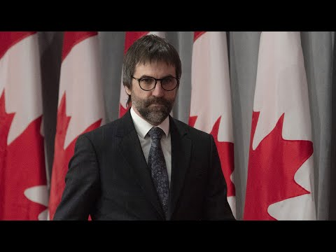 """Feds having to do """"a lot of clarifications"""" on digital media regulations: Conservative MP"""