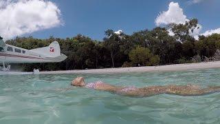 This beach was insane! Australia road trip! Next Stop: Whitsunday Islands