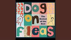 All Tracks Dog On Fleas Youtube
