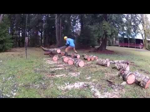 Crosscut Saw Firewood