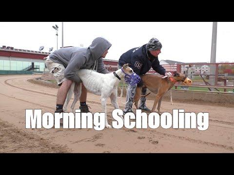 Morning Schooling [4.01]
