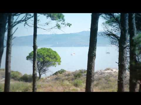 A Sea of Nature   Active Tourism in Vigo
