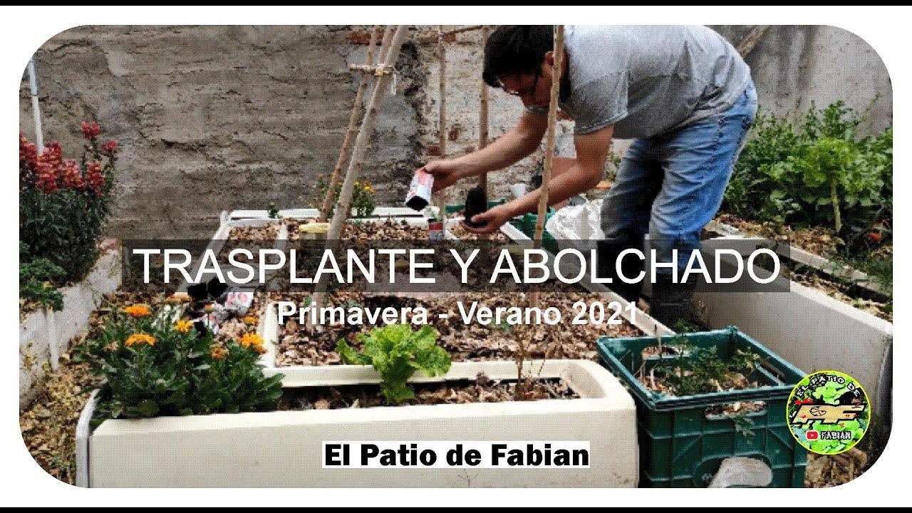 Trasplante y Acolchado Huerto de PRIMAVERA VERANO 2021 Tomates y Lechugas