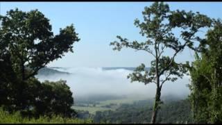 Fog in Jackson