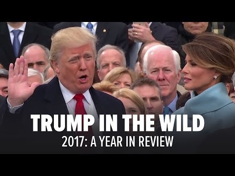 Trump in the Wild: 2017 - A Year In Review