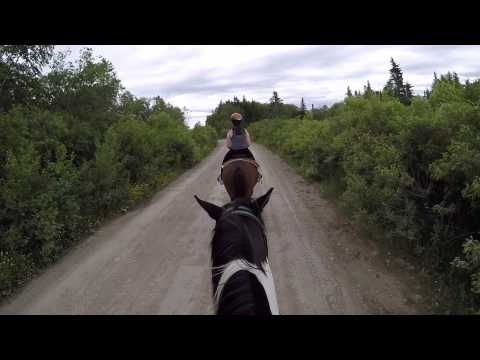 Horseback Riding, Reidville Newfoundland Cache Rapids Stable
