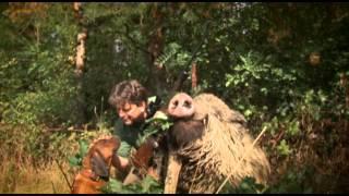 Gímbika vadászat Sárfimizdón