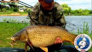 Озеро Цукерня 2012 • Трофейная карповая рыбалка • №2