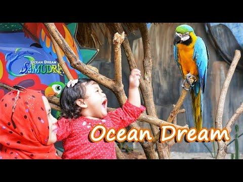 ocean-dream-ancol---jakarta