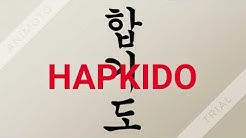 What is HAPKIDO - Technical Sheet - English Version