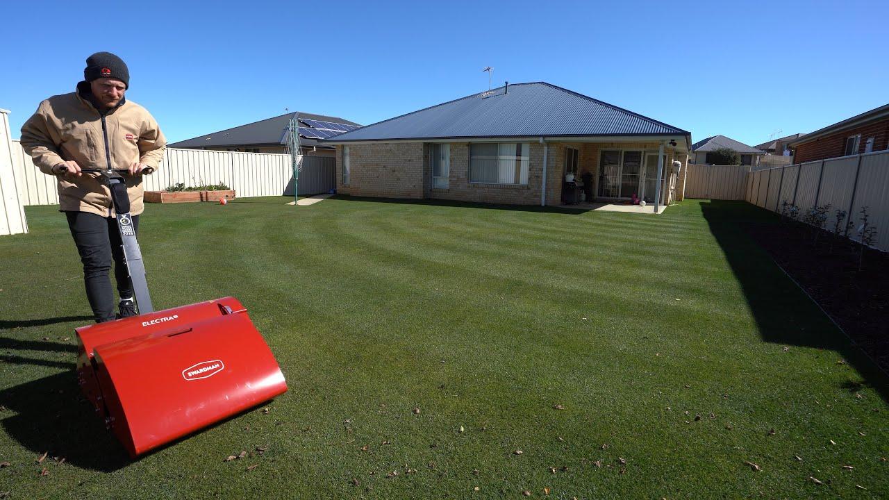 "Circle Lawn Stripes // 15mm (0.59"") Perennial Ryegrass"