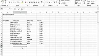 Data Entry Shortcuts in Excel 2013
