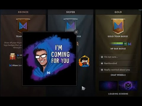 ALL SUPPORTERS CLUB 2021 - BUYING NIGMA | Dota 2
