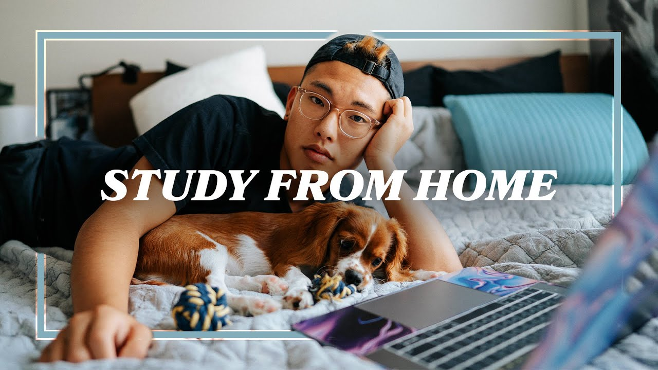 🧠: How to Study for an Online Exam