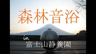 森林音浴 in 富士山静養園 / Nature Sound Meditation Program in Mt.Fuji by Jun Mizuki / 翠月淳