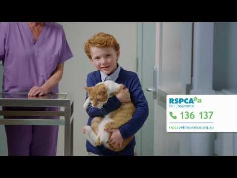 RSPCA Pet Insurance - Surgery TVC (60)
