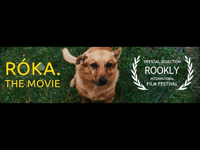 RÓKA: The Movie.