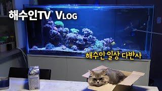 해수인TV 구독해 주셔서 감사합니다!!! 감사영상 만들어봤어요~