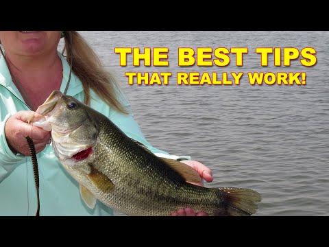How To Fish A Finesse Worm (The Best Ways)   Bass Fishing