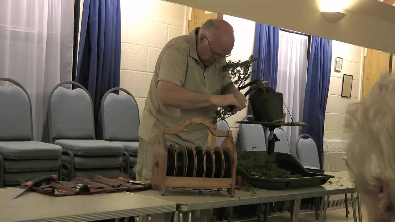 Ken Norman Bonsai Demo Sus Bonsai Group